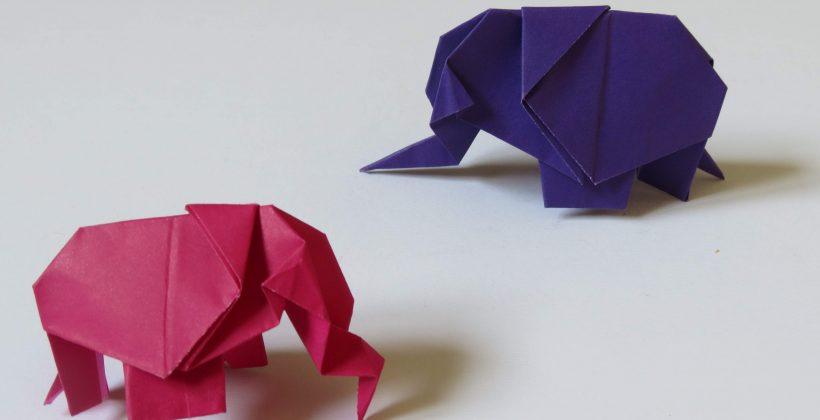 فیل اوریگامی - کازیه